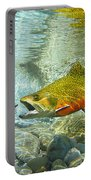 Brook Trout And Artificial Fly Portable Battery Charger