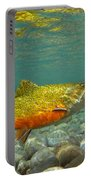 Brook Trout And Coachman Wet Fly Portable Battery Charger