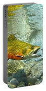 Brook Trout And Silver Doctor Portable Battery Charger