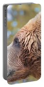 Brown Bear Portrait In Autumn Portable Battery Charger