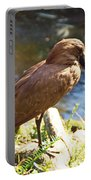 Brown Bird Portable Battery Charger