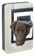 Brown Dog Portable Battery Charger