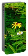Brown-eyed Susans Along Rivier Du Nord Trail In The Laurentians-quebec Portable Battery Charger