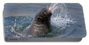 Brown Fur Seal Throwing A Fish Head Portable Battery Charger