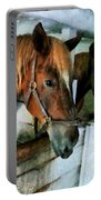 Brown Horse In Stall Portable Battery Charger