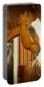 Brown Horse Portable Battery Charger