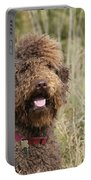 Brown Labradoodle In Field Portable Battery Charger