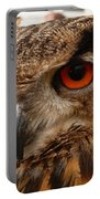 Brown Owl Portable Battery Charger