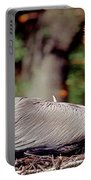 Brown Pelican Incubating Eggs Portable Battery Charger