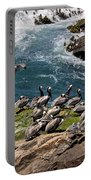 Brown Pelicans And Gulls On The Reef Portable Battery Charger