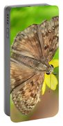Brown Skipper Butterfly Square Portable Battery Charger