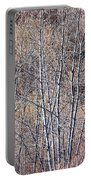 Brown Winter Forest With Bare Trees Portable Battery Charger