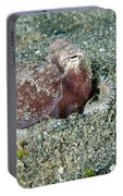 Brownstripe Octopus Burying Itself Portable Battery Charger