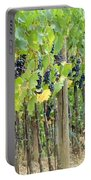 Brunello Grape Vineyard Portable Battery Charger
