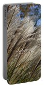 Brushes Of Autumn  Portable Battery Charger