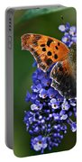 Brushfoot Satyr Comma Portable Battery Charger