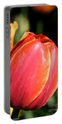 Brushstrokes By Tulip Portable Battery Charger
