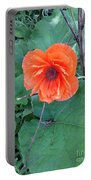 Bryan's Poppy Portable Battery Charger