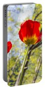 Bryant Park Tulips New York  Portable Battery Charger
