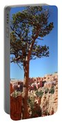 Bryce Canyon Pine Portable Battery Charger