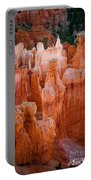 Bryce Hoodoos Portable Battery Charger