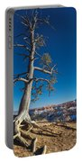 Bryce Tree Portable Battery Charger