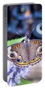 Buckeye I Portable Battery Charger