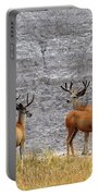 Bucks Abound Portable Battery Charger