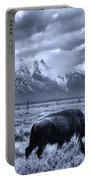 Buffalo And Mountain In Jackson Hole Portable Battery Charger