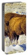 Buffalo Painting Portable Battery Charger