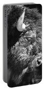 Buffalo Portrait Portable Battery Charger