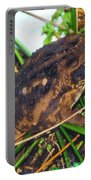 Bufo Toad Portable Battery Charger