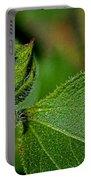 Bug On Leaf Portable Battery Charger