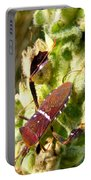 Bug On Stalk Of The Wooly Mullein Portable Battery Charger