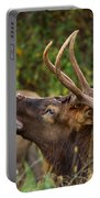 Bugling Bull Elk Portable Battery Charger