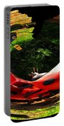 Bugs At The Zoo Lady Bug Portable Battery Charger