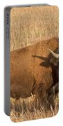 Bull Bison At The  Elk Ranch Grand Teton National Park Portable Battery Charger