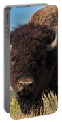 Bull Bison Portable Battery Charger