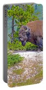 Bull Bison Near Mud Volcanoes In Yellowstone National Park-wyoming Portable Battery Charger