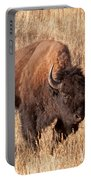 Bull Bison Running In Yellowstone National Park Portable Battery Charger