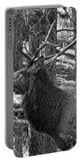 Bull Elk Bw Portable Battery Charger