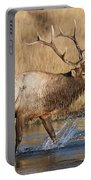 Bull Elk Crossing The Madison River Portable Battery Charger