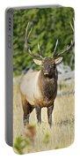 Bull Elk IIII Portable Battery Charger