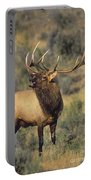 Bull Elk In Rut Bugling Yellowstone Wyoming Wildlife Portable Battery Charger