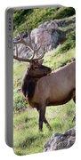 Bull Elk In Velvet Portable Battery Charger