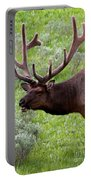 Bull Elk In Yellowstone Portable Battery Charger