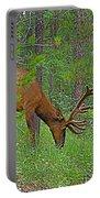 Bull Elk Near Maligne Canyon In Jasper Np-alberta Portable Battery Charger