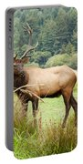 Bull Elk On Watch Portable Battery Charger