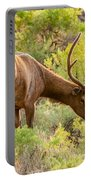 Bull Elk Profile Portable Battery Charger