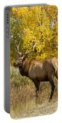 Bull Elk With Autumn Colors Portable Battery Charger